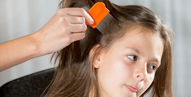 Proven and Effective Tips to remove lice from your toddler's hair  Banner